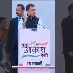 Rahul fi (2)