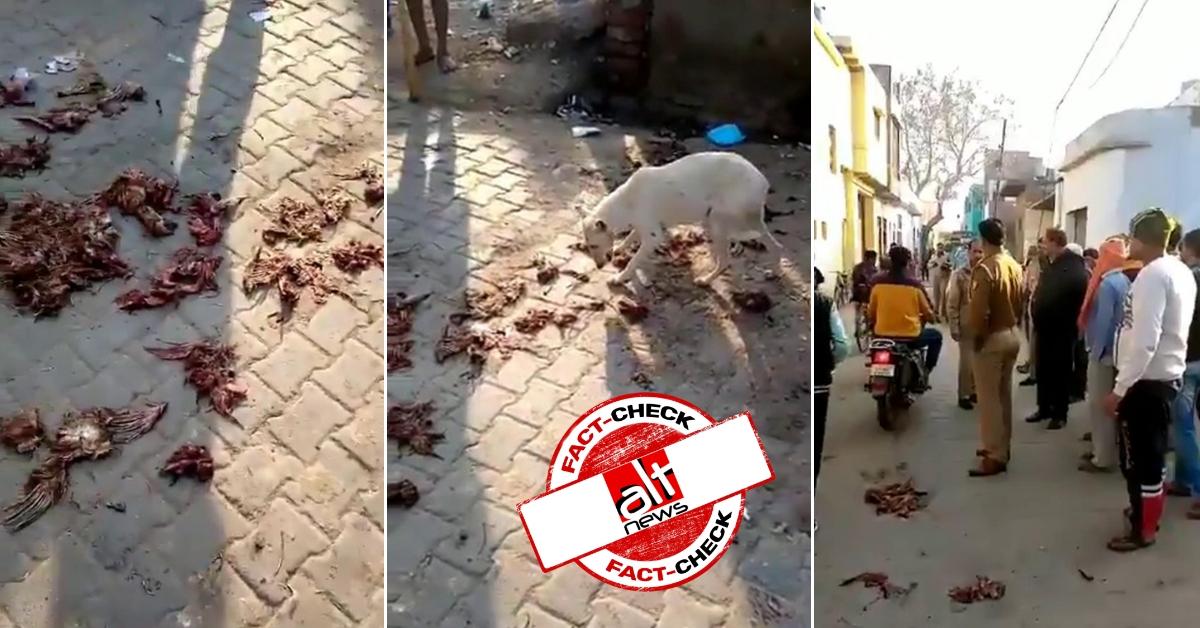 हाथरस में मंदिर के सामने मुसलमानों द्वारा मांस के टुकड़े फ़ेंके जाने के दावे की सच्चाई पुलिस ने बताई